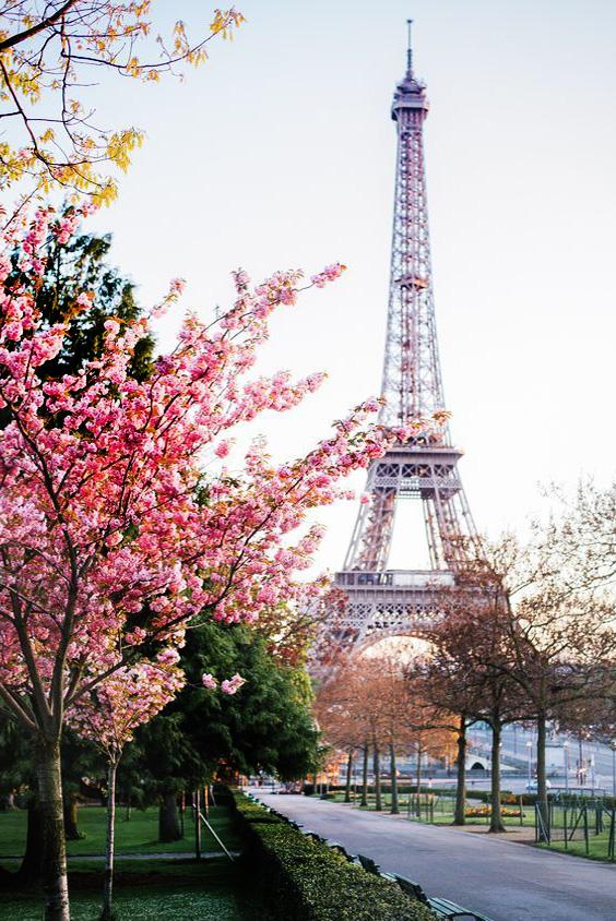 imagenes-de-paisajes-de-paris.jpg